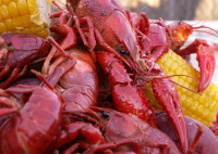 Crawfish Boil Seasoning