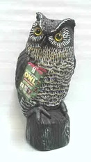 Garden Defense Owl