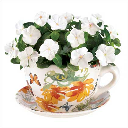 Butterfly Planter Teacup