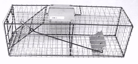 Small Live Animal Trap