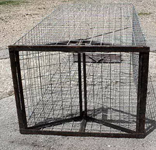 Live Trap for Feral Hogs and other Large Animals
