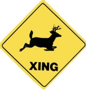Crossing Sign Deer