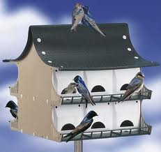 Purple Martin Birdhouses - Purple Martin Birdhouses - The perfect birdhouse!